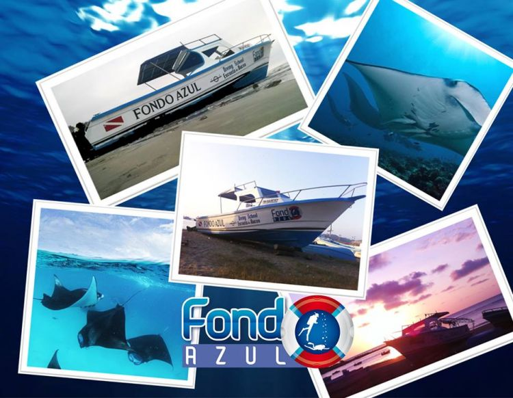 Welcome to the Fondo Azul !